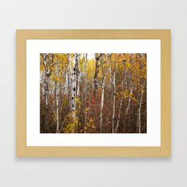 Autumn in Cheboygan, MI Framed Art Print