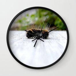 Wannabe Tiger (Fox Moth Caterpillar) Wall Clock