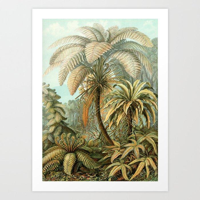 Vintage Tropical Palm Kunstdrucke