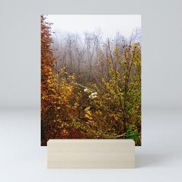 End of November  Mini Art Print