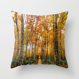 Acadia Autumn Throw Pillow