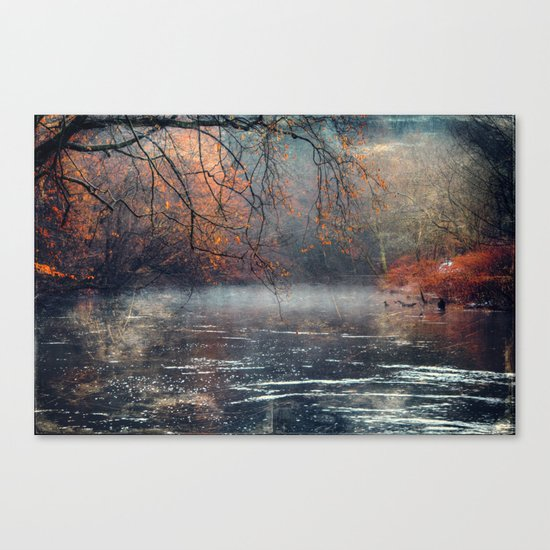 between fall & winter Canvas Print