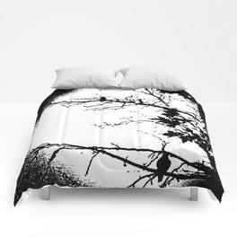 Hang Time Comforters