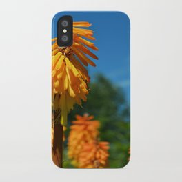 Spots of Orange iPhone Case