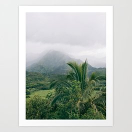 Hanalei Valley, Kauai Hawaii, Tropical Nature, Landscape Photography Art Print