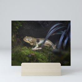 Barred Tiger Salamander Mini Art Print