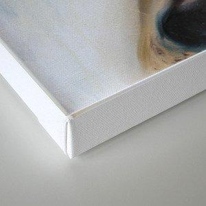 depth of field Canvas Print