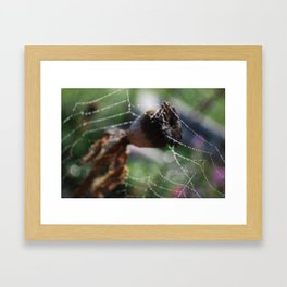 Web of Water Framed Art Print