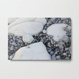Beach Stone Metal Print