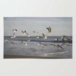 Seagulls in Flight Rug