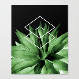 Agave geometrics III Canvas Print