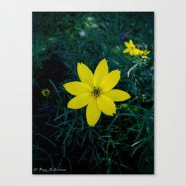 Yellow Flower 1 Canvas Print
