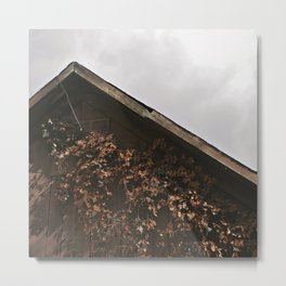 Camouflage - Red Leaves on Barn Metal Print