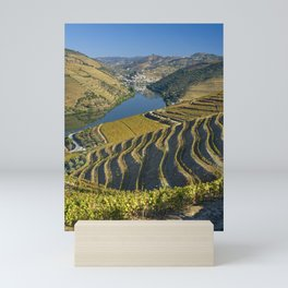 Vineyards in the Douro Valley, Portugal Mini Art Print