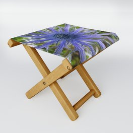 A thistle with style Folding Stool