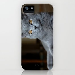Diesel the cat 1 iPhone Case
