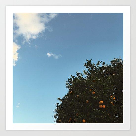 California oranges Art Print
