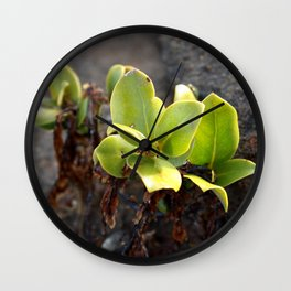 Mangrove Shoot Wall Clock