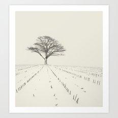 Winter Field Art Print