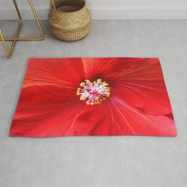 Fruit Punch Hibiscus, red flower close up, in my hipster garden Rug