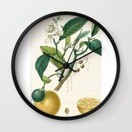 Lemon tree Vintage illustration Wall Clock