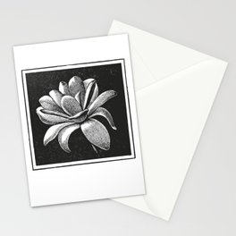 White flower Stationery Cards