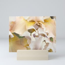 Ruffled elegance Mini Art Print