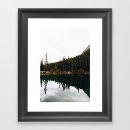 GRASSI 2 Framed Art Print