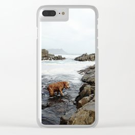 #168Photo #185 #Grandma in #Blue and the #Red #Spaniel playing in the #Pools Clear iPhone Case