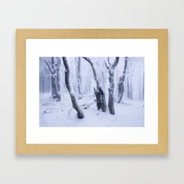 The Secrets of Fangorn Framed Art Print