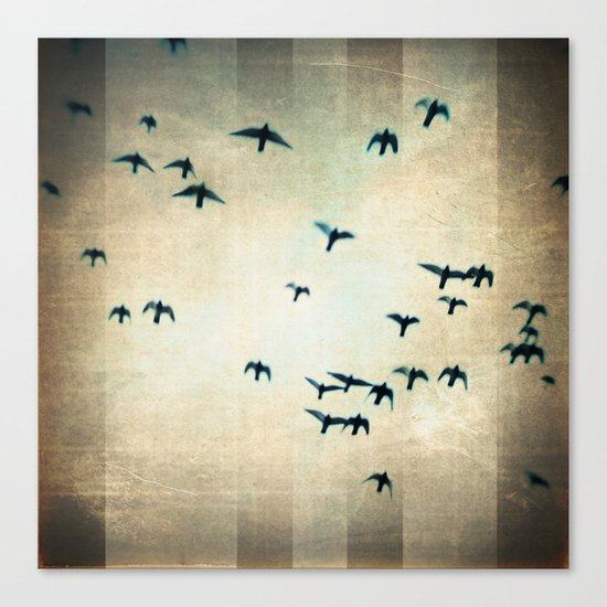 one for the birds Canvas Print