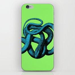 Snek 1 Snake Teal Turquoise Lime Green iPhone Skin