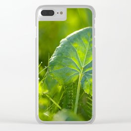 Large Green Leaf On A Sunny Background decor #society6 #homeart Clear iPhone Case