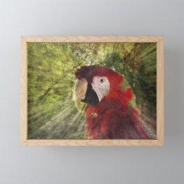 Red Bird Framed Mini Art Print