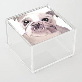 Bully Bull Dog Acrylic Box