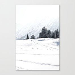 Winterwonderland Canvas Print