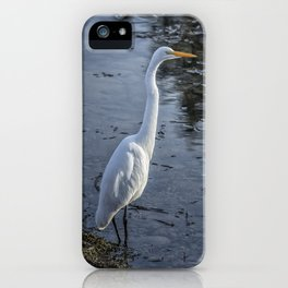 Great Egret at Delta Ponds, No. 1 iPhone Case