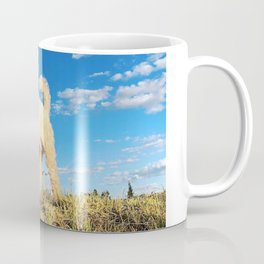 Maltipoo, meet clear blue Peruvian sky Coffee Mug