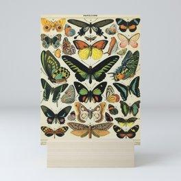 Adolphe Millot Butterfly Vintage Scientific Illustration Old Le Larousse pour tous llustration Mini Art Print