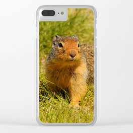 Twitchy Nosed Columbian Ground Squirrel Clear iPhone Case