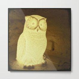 owl-y Metal Print