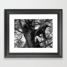 Berry Beary Framed Art Print