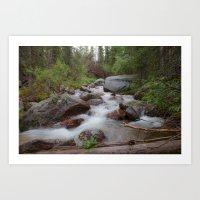 Relaxing Chicago Creek Cascade Art Print