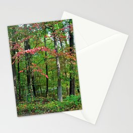Inflexible Perceptions Stationery Cards