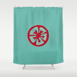 Aqua Tomato Slice Shower Curtain