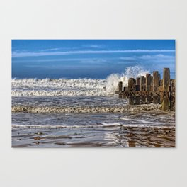 White horse on walcott beach Canvas Print