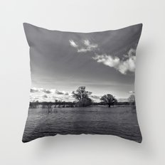 water world... Throw Pillow