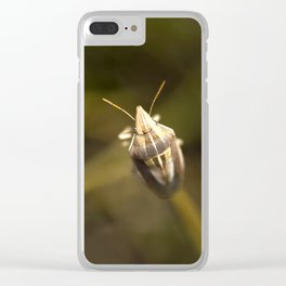 A beautiful bug Clear iPhone Case