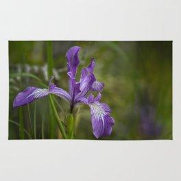 Free Ranging Wild Iris Rug