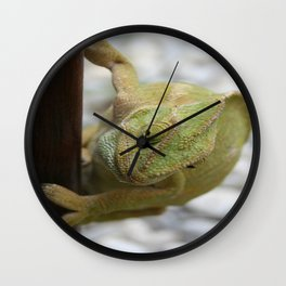 Chameleon: Fifty Shades of Green Wall Clock